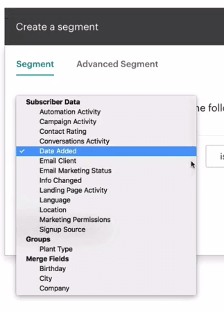 Mailchimp - segment options
